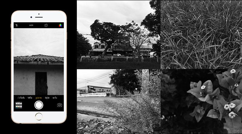 iphone-camera-tip
